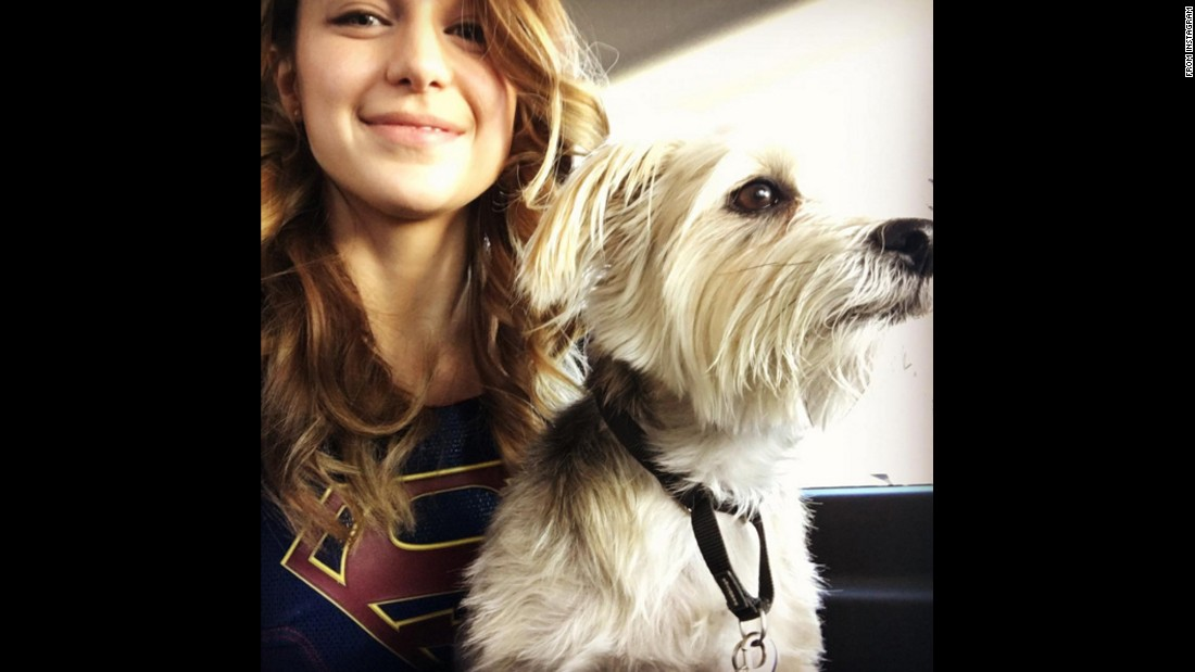 """Good morning from the set of #supergirl from me & the resident transpo pup Duke,"" <a href=""https://www.instagram.com/p/BAz_zFwJVxk/"" target=""_blank"">actress Melissa Benoist said</a> on Thursday, January 21."