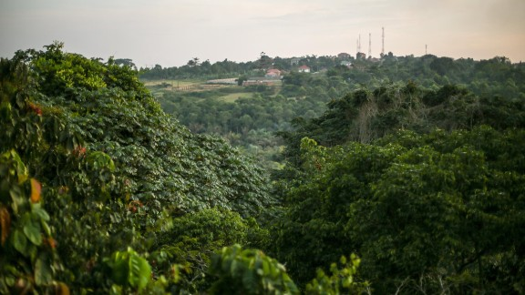 A climb to the top of the tower that Andrew Haddow's grandfather helped build more than a half-century ago reveals a view shows a once remote research outpost now entirely surrounded by Uganda's urban centers. Any new viruses discovered here will no longer be considered remote.