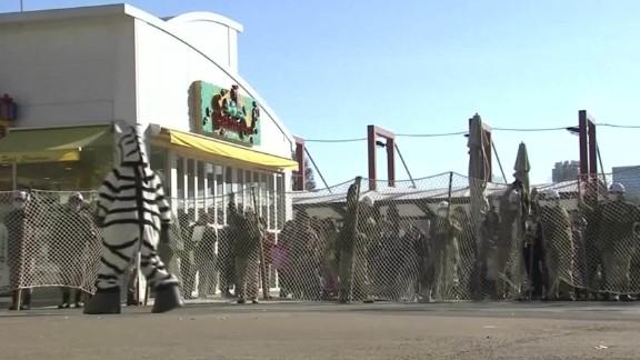 japan preparing for animal escapes at tokyo zoo _00001003.jpg