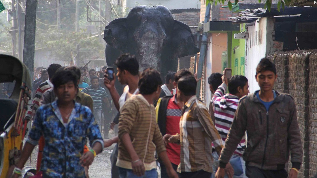 "A wild elephant wandered into the Indian town of Siliguri on Wednesday, February 10. <a href=""http://www.cnn.com/2016/02/10/world/gallery/wild-elephant-india/index.html"" target=""_blank"">He trampled parked cars and motorbikes</a> before being tranquilized by wildlife officials."