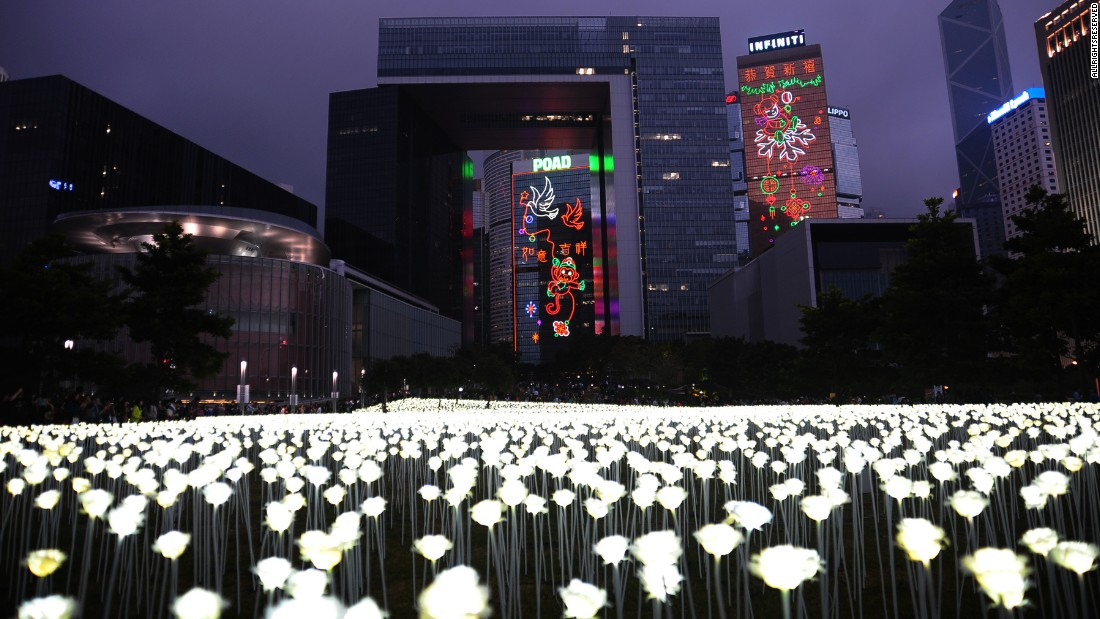 Light Rose Garden Illuminates Hong Kongu0027s Skyline | CNN Travel Nice Ideas