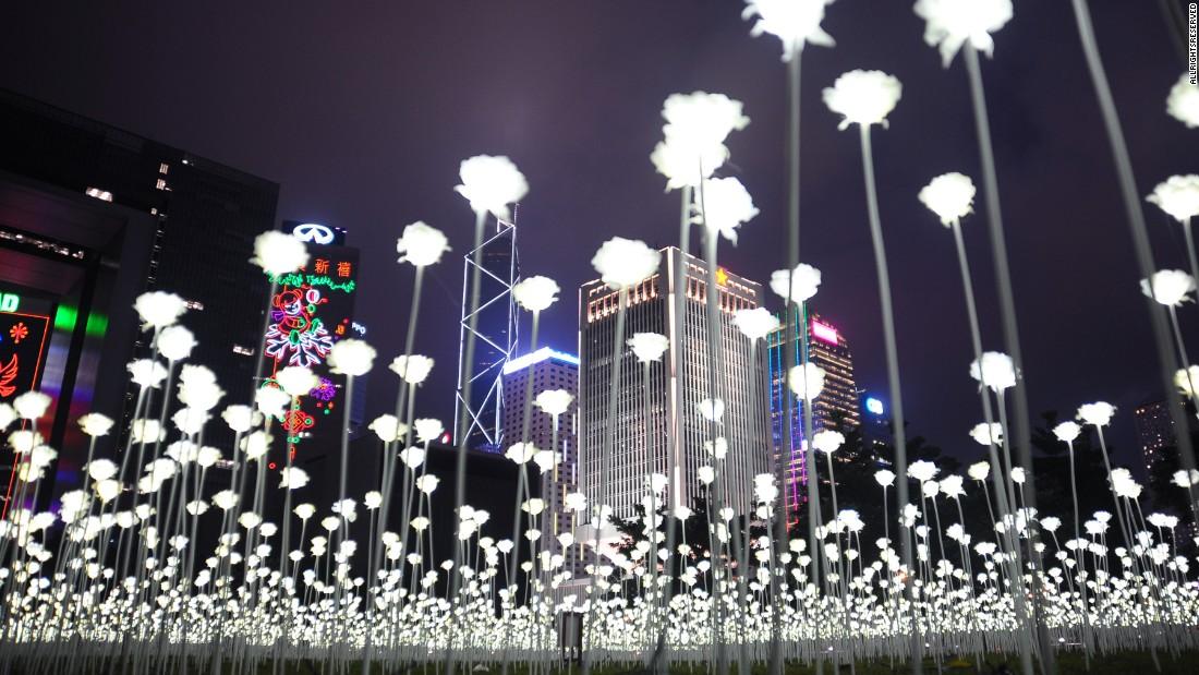 Light Rose Garden Illuminates Hong Kong S Skyline Cnn Travel
