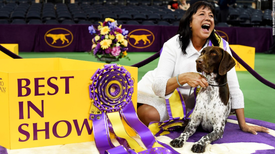 Valerie Nunes-Atkinson sits beside California Journey, a German shorthaired pointer who won the Best in Show award at the annual Westminster Kennel Club dog show on Tuesday, February 16.