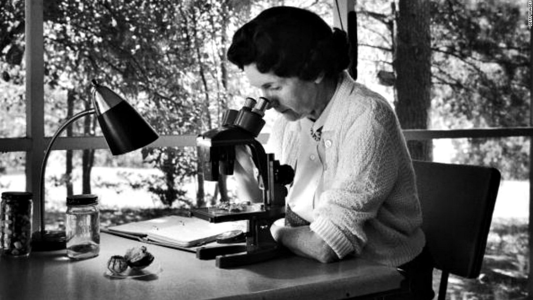 American marine biologist and conservationist Rachel Carson (1907-1964) was also an author. After WWII, she focused on warning the public about the long-term effects of misusing pesticides. Her book Silent Spring and other works challenged the practices of agricultural scientists and are credited with advancing the global environmental movement.