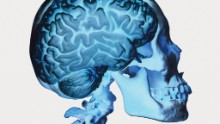 Age-proof your brain by keeping your heart healthy, study says