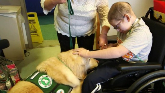 animal therapy vital signs spc a_00034921.jpg