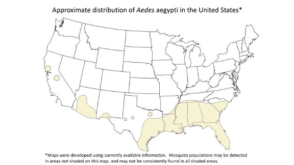 """Maps of U.S. Aedes aegypti distribution  """"are incomplete,"""" a CDC official said."""