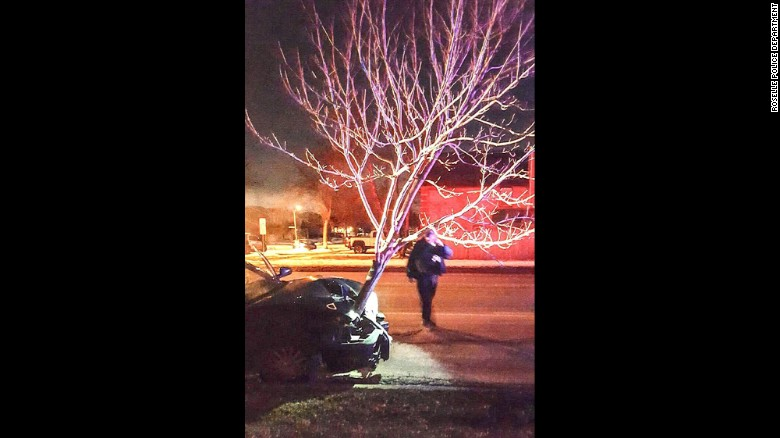 Police spot tree lodged in car's front grill