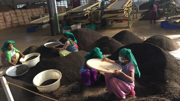 Final processing at the tea plant before it is shipped to market where prices rise or fall drastically.