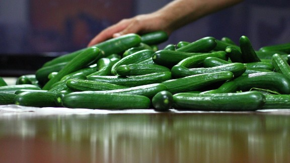 Cucumbers from the Qatar pilot, which delivered similar volume to European farms.