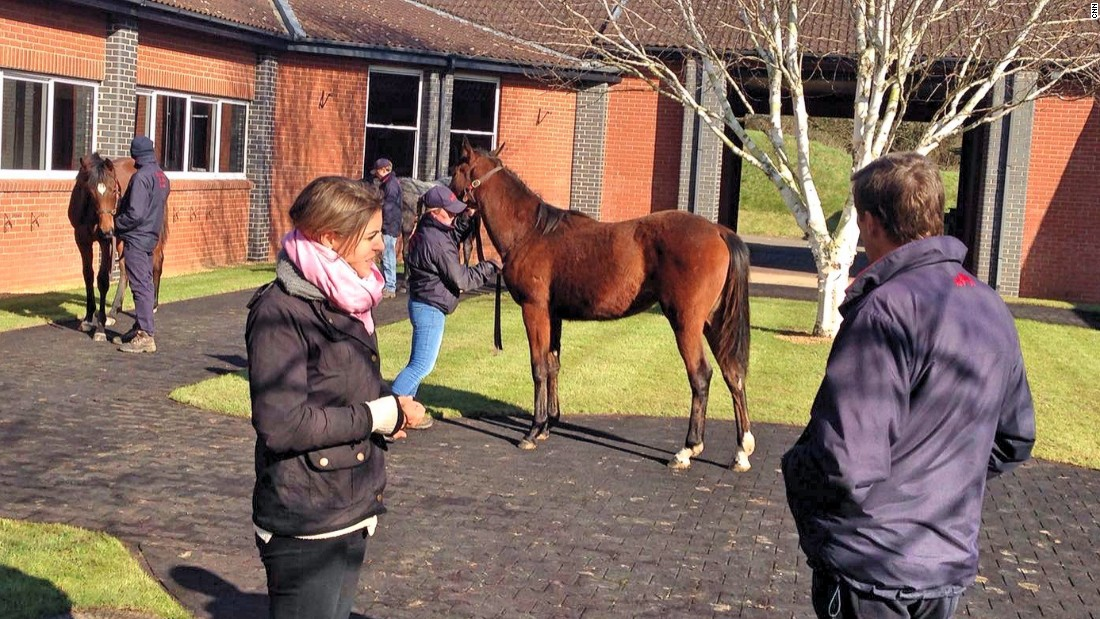 The yearlings are paraded whilst we study the young Frankel filly.