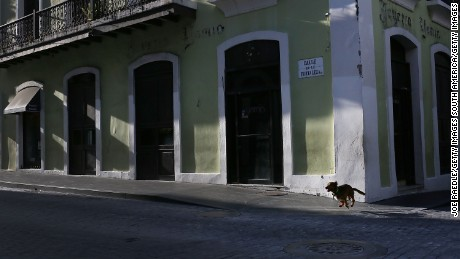 SAN JUAN, PUERTO RICO - JUNE 30: A dog runs through the street a day after the  Puerto Rican Governor Alejandro Garcia Padilla gave a televised speech regarding the governments $73 billion debt on June 30, 2015 in San Juan, Puerto Rico.  The Governor said in his speech that the people will have to sacrifice and share in the responsibilities for pulling the island out of debt.  (Photo by Joe Raedle/Getty Images)