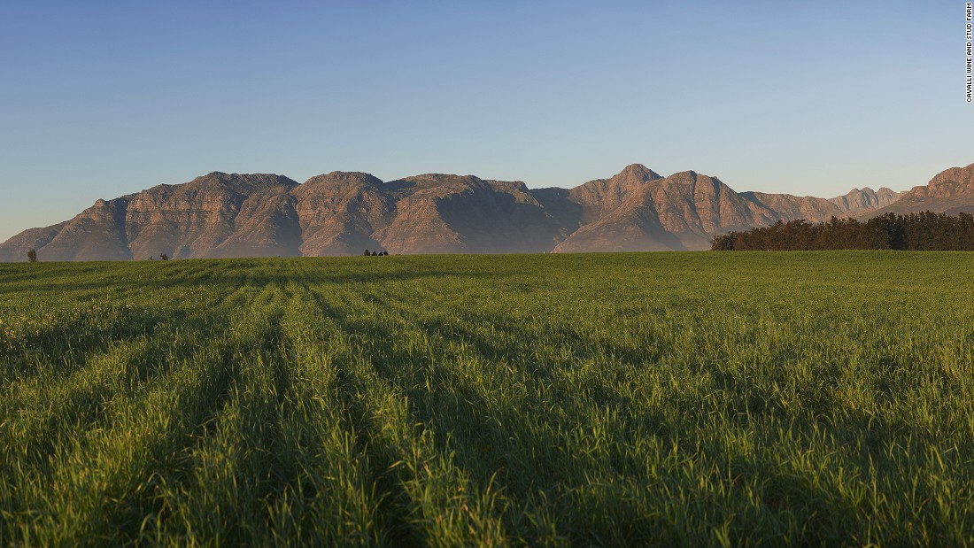 The estate looks out onto some of the most spectacular scenery in the Western Cape.