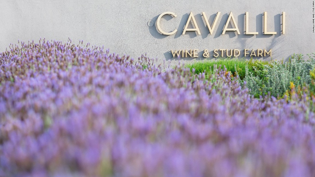 Named after the Italian word for horses, the Cavalli estate, near Stellenbosch covers around 125 hectares.