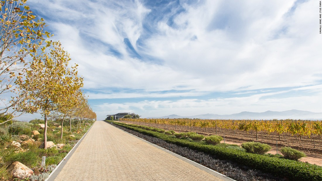 Famed for its rich, full-bodied wines, the vineyards are located a 30-minute drive from Cape Town.