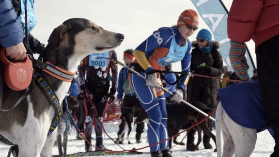 One of the most rewarding aspects of this international sport is the relationship between human and dog.