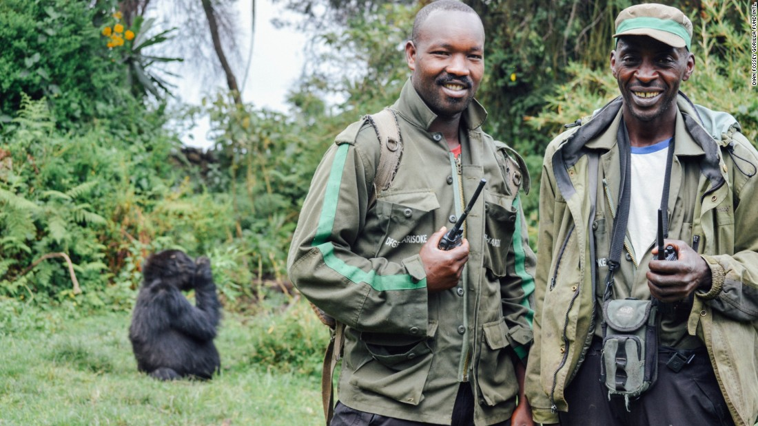 The Dian Fossey Gorilla Fund's gorilla trackers protect gorillas every day of the year.