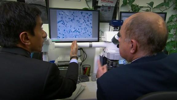 CDC Zika lab_00015101.jpg