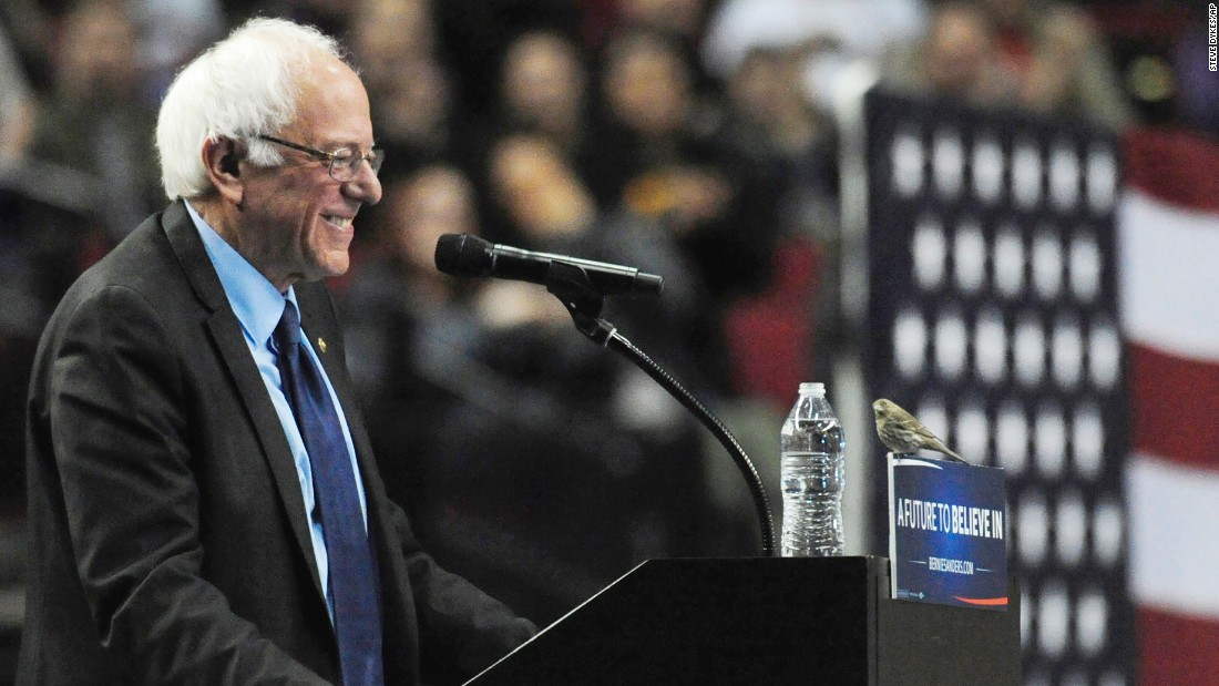 "U.S. Sen. Bernie Sanders, who is seeking the Democratic Party's presidential nomination, smiles at a bird <a href=""http://www.cnn.com/2016/03/25/politics/bernie-sanders-bird-portland-oregon-symbolism/index.html"" target=""_blank"">after it landed on his podium</a> in Portland, Oregon, on Friday, March 25."