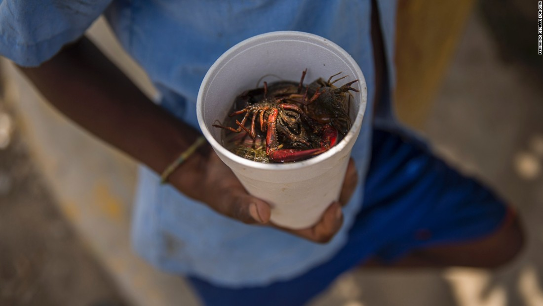 A student shows off crawfish he found in a canal by the Esperanza school. Jacmel, on Haiti's southern coast, is very different from what the school's families know in Esperanza, a rich agricultural region where Haitian immigrants often work in the rice fields or on tobacco and banana plantations. Some 25 families -- about 170 people -- later moved to Jacmel, which many consider Haiti's cultural capital. It's a place of artists and beaches where tourism is the biggest draw.