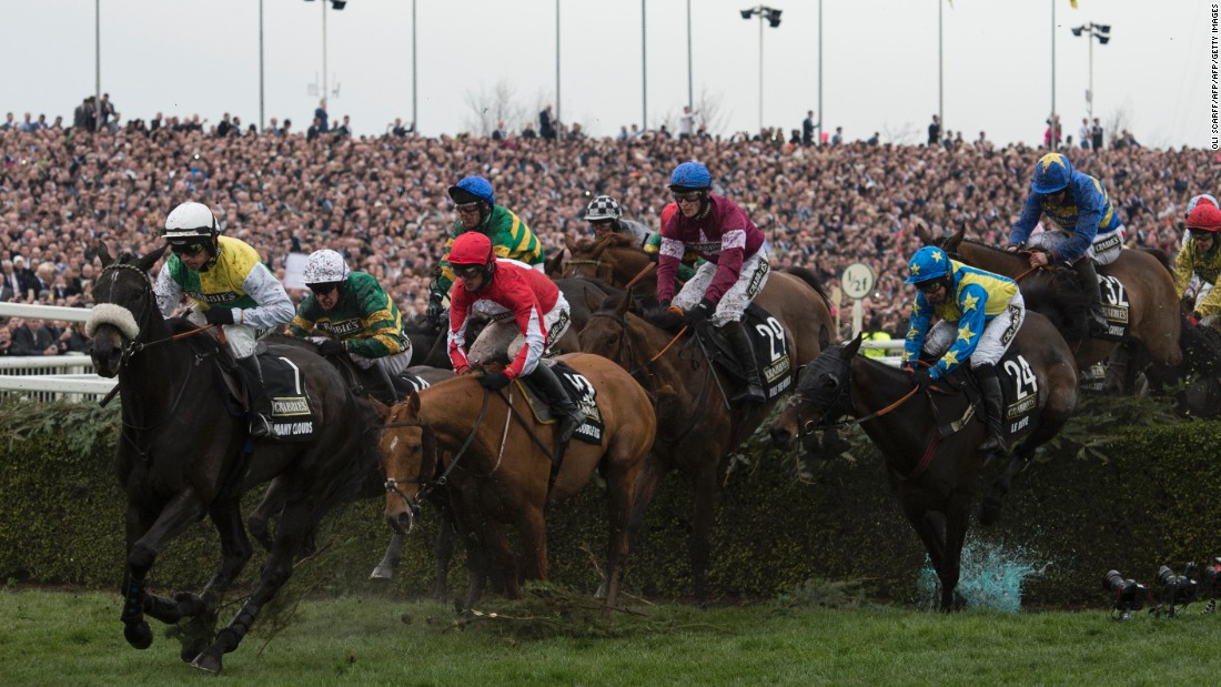 Run over a distance of four miles and four furlongs, the Grand National is among the the UK's sporting crown jewels, alongside the likes of the Varsity Boat Race, Wimbledon and British Open golf championship.