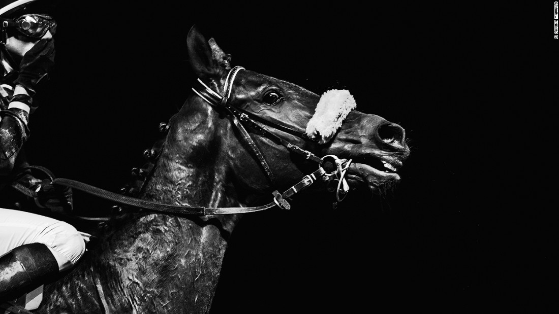 "Maiwald has built up a large following on social media and has been named one of the top 10 equine photographers of the world, according to her <a href=""https://www.facebook.com/CarinaMaiwaldFotografie/"" target=""_blank"">Facebook</a> profile."