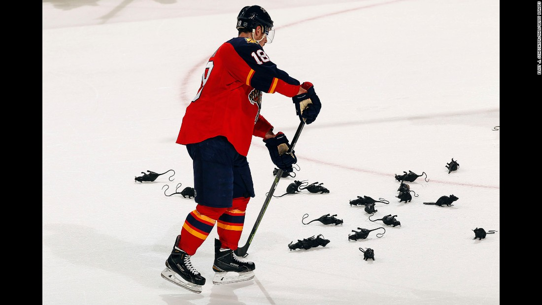 Reilly Smith of the Florida Panthers collects plastic victory rats after teammate Dmitry Kulikov scored an empty net goal against the New York Islanders in Game Two of the  2016 NHL Stanley Cup Playoffs at the BB&T Center in Sunrise, Florida, on April 15.