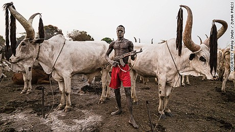 A Mundari man guards his precious Ankole-Watusi herd with a rifle.  About 350,000 cattle are stolen and more than 2000 people killed each year by cattle rustlers.