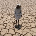 GettyImages-524092582India drought