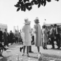 kentucky derby fashion crowd 1966
