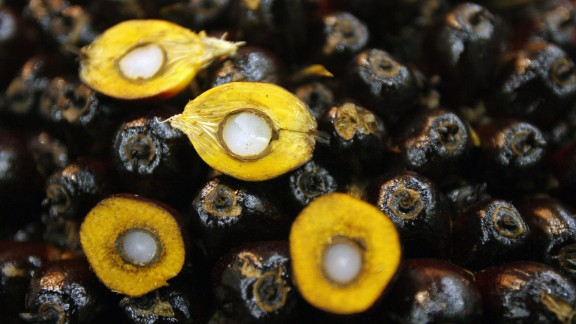 The global palm oil industry was worth $62 billion in 2016. Pictured, palm kernels, which can be used to make the oil.