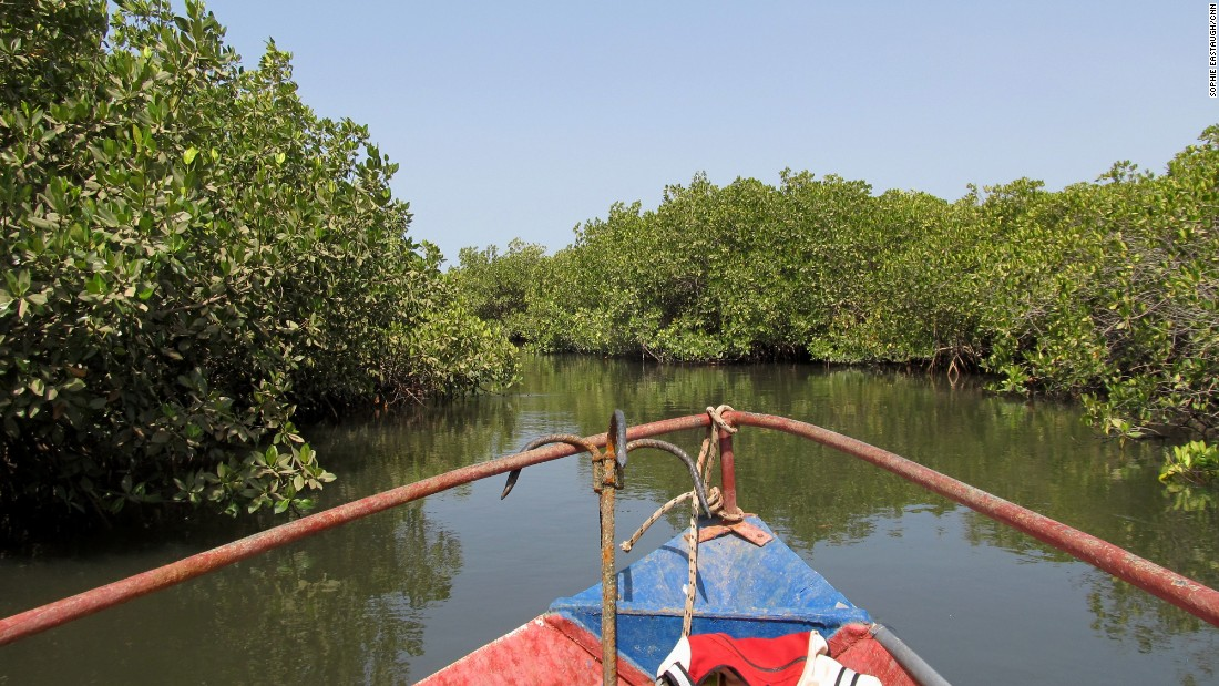 Time slows down with a journey into the Sine Saloum region's labyrinth of mangrove creeks.