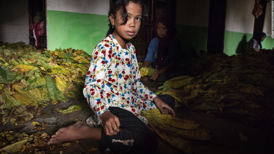 "Thousands of children work in Indonesia's tobacco farms, <a href=""https://www.hrw.org/news/2016/05/25/indonesia-child-tobacco-workers-suffer-firms-profit"" target=""_blank"">Human Rights Watch says. </a>"