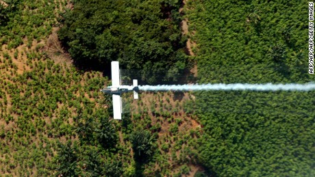 An airplane sprays coca plants in El Catatumbo, Norte de Santander department, Colombia, near the border with Venezuela on June 4, 2008. About 3000 hectares have been fumigated in  the area. AFP PHOTO/Luis Robayo (Photo credit should read LUIS ROBAYO/AFP/Getty Images)
