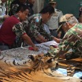 02 Thailand tiger temple faces criminal complaint 0602
