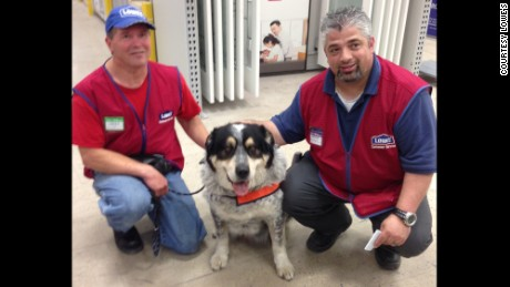Owen Lima and Blue with Lowe's store manager Paolo Gallo