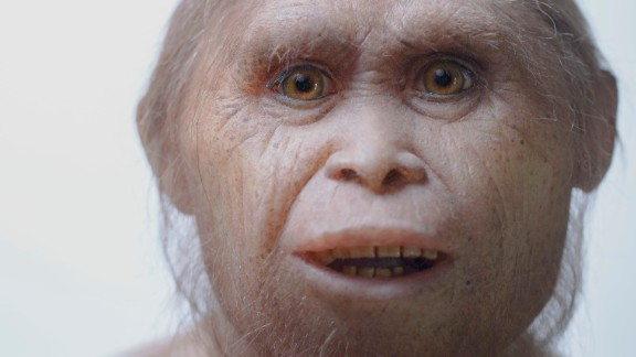 This 2015 picture provided by Kinez Riza shows a reconstruction model of Homo floresiensis by Atelier Elisabeth Daynes at Sangiran Museum and the Early Man Site. In a paper released Wednesday, June 8, 2016, researchers say newly-discovered teeth and a jaw fragment, which are about 700,000 years old, have revealed ancestors of Homo floresiensis, also known as hobbits, our extinct, 3 1/2-foot-tall evolutionary cousins. The fossils were excavated about 46 miles from the cave where the first hobbit remains were found in Indonesia. (Kinez Riza via AP)