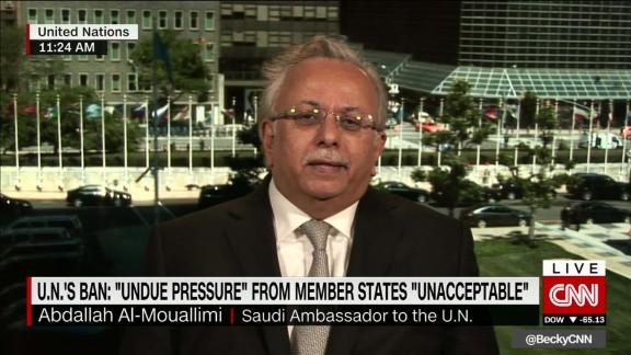 mouallimi saudi pressure yemen un intv ctw_00014316.jpg
