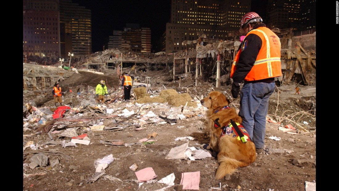 Frank Shane and his dog Nikie, the only therapy dog certified to work at the World Trade Center terrorist attacks site, overlook ground zero Friday, Jan. 18, 2002, in New York, while waiting to comfort workers undergoing the stress of working at the site.