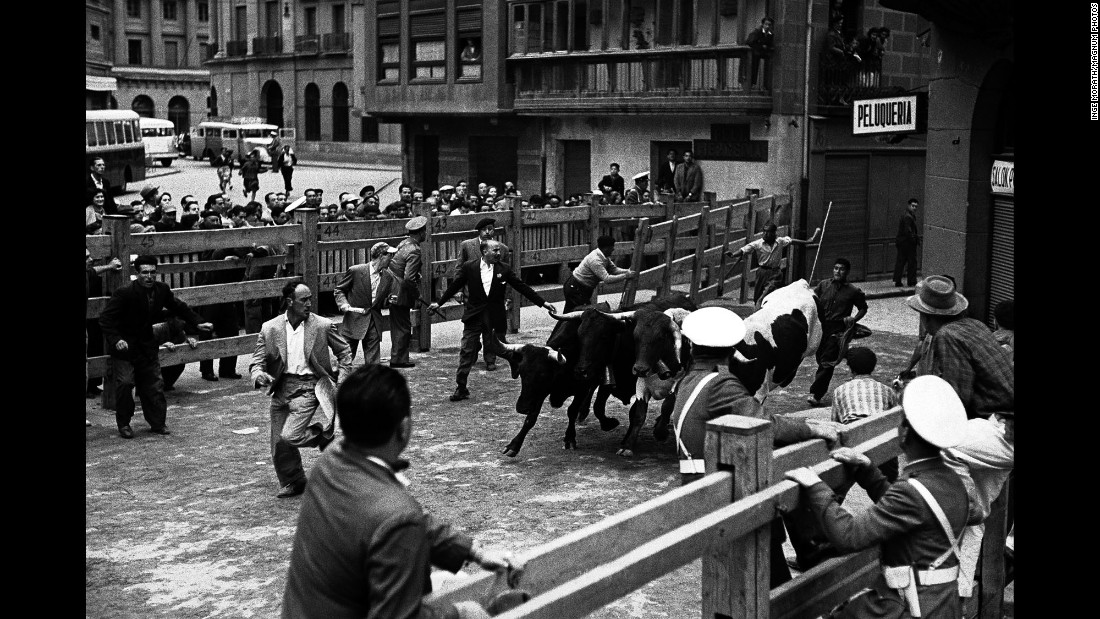 The bulls are let out of their pen. During every festival, there are eight days of bull runs and bullfights.
