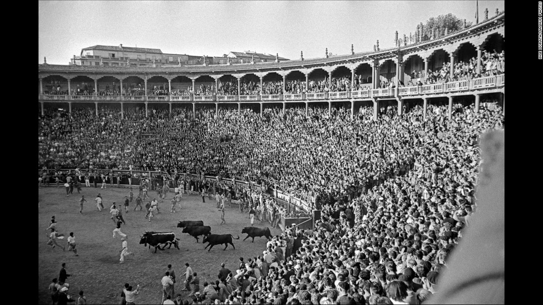 "Bulls enter a bullring in Pamplona, Spain, during the San Fermin festival in 1954. The annual festival and its world-famous ""Running of the Bulls,"" which started Thursday, have been around for centuries. Late photographer Inge Morath was in Pamplona more than 60 years ago to take these pictures."