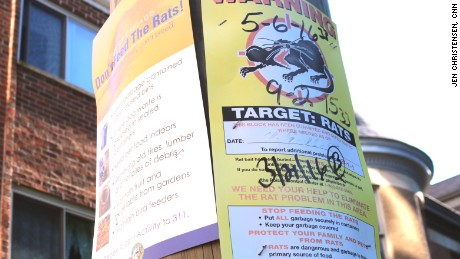 Rat warning signs went up across Chicago as complaints skyrocketed.