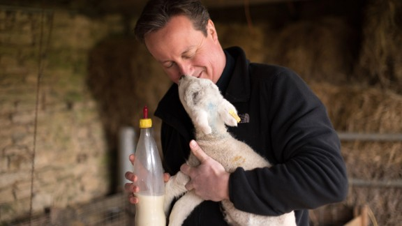 The Prime Minister feeds orphaned lambs ahead of the 2015 general election.
