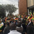 Zimbabwe protest flags