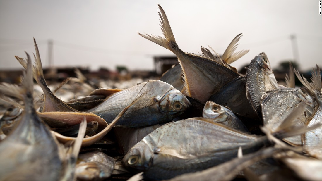 Fish at the fish processing site in Joal where fish is preserved by drying and smoking.