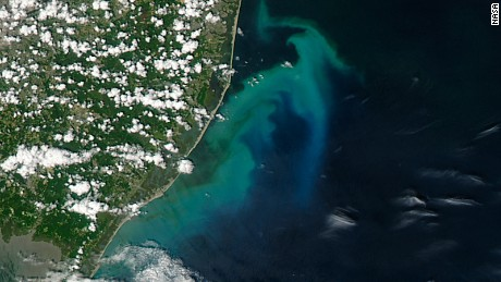 NASA's photo of phytoplankton bloom off of the South Jersey coast