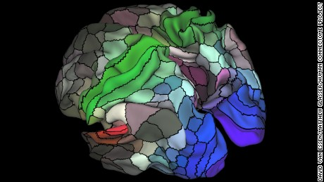 New Brain Map Identifies 97 Hitherto Unknown Regions