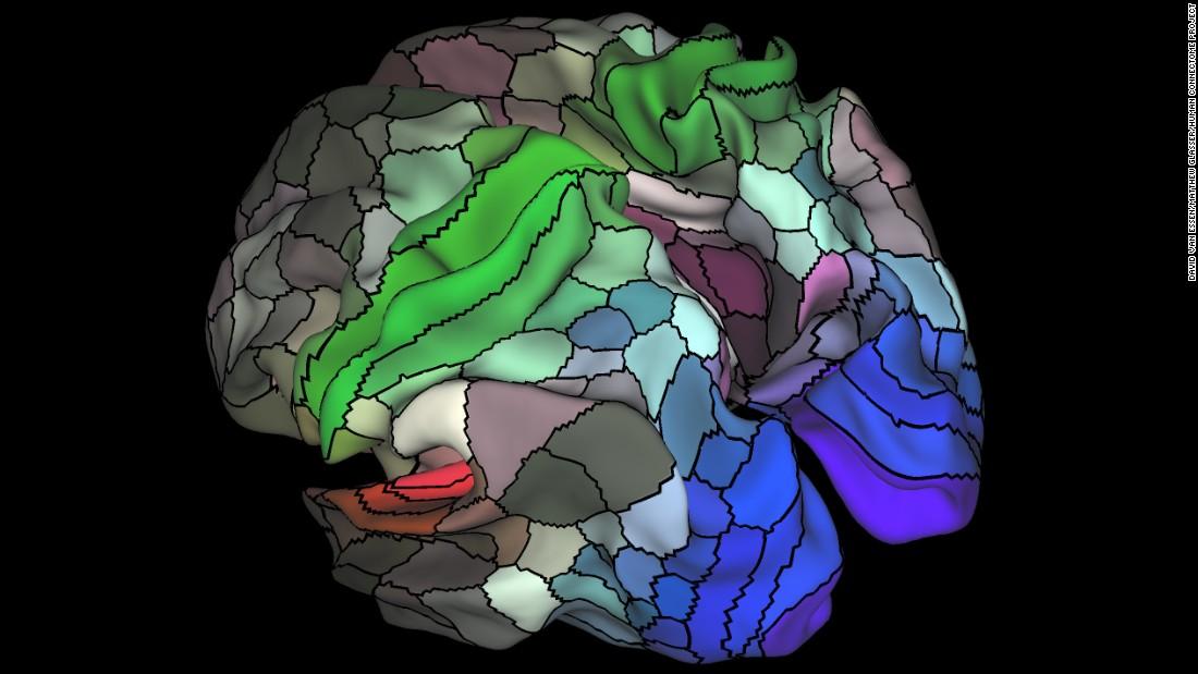 Updated Brain Map Identifies 97 New Areas Cnn