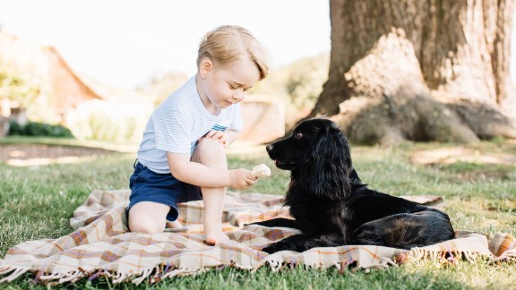 The Duke and Duchess of Cambridge released new photos of Prince George to mark his third birthday in July 2016. Here he plays with the family's pet dog, Lupo.