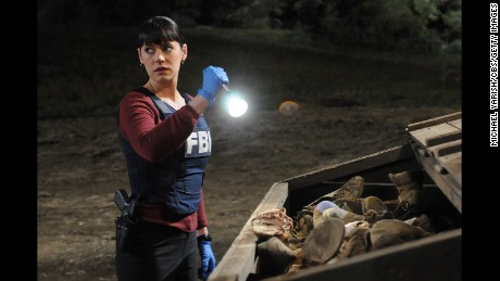 "Actress Paget Brewster will once again play Agent Emily Prentiss on ""Criminal Minds."""